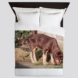 LS puppy liver and tan bloodhound Queen Duvet