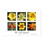 The Lily Garden Postcards (Package of 8)