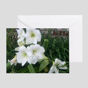 004-AM-Matterhorn Greeting Card