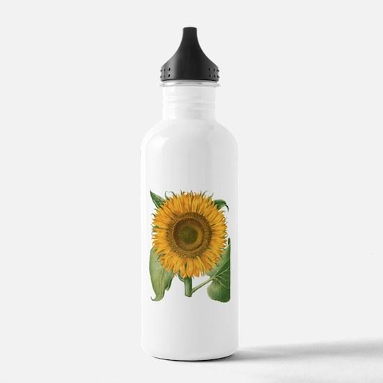 Vintage Sunflower Basi Sports Water Bottle