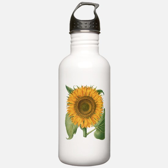 Vintage Sunflower Basi Water Bottle