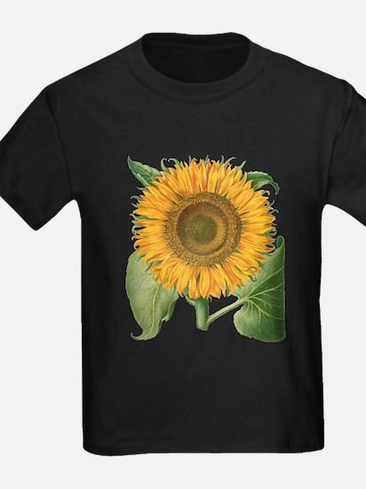 Vintage Sunflower Basilius Besler T-Shirt
