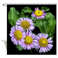 Purple Asters Shower Curtain