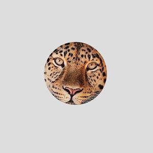 Jaguar Mini Button