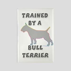 Bull Terrier Slvr Rectangle Magnet