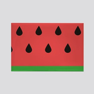Watermelon Magnets