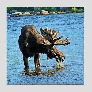 Moose Tile Coaster