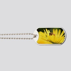 Busy Bee Dog Tags