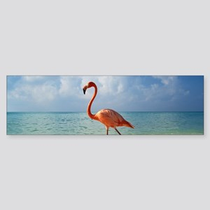 Flamingo On The Beach Bumper Sticker