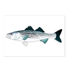 Striped Bass v2 Postcards (Package of 8)