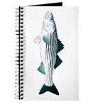 Striped Bass v2 Journal