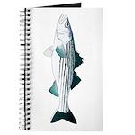 Striped Bass v2 Journal