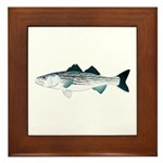 Striped Bass v2 Framed Tile
