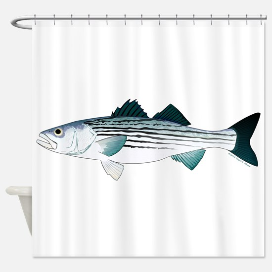 Striped Bass v2 Shower Curtain
