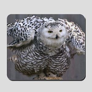 Magnificent OWL Mousepad
