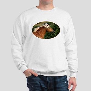 hafi1 Sweatshirt