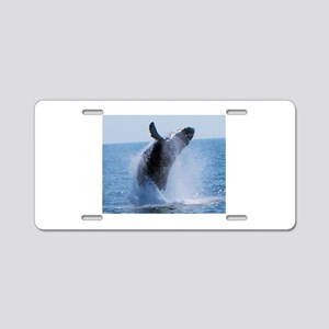 whale jumping Aluminum License Plate