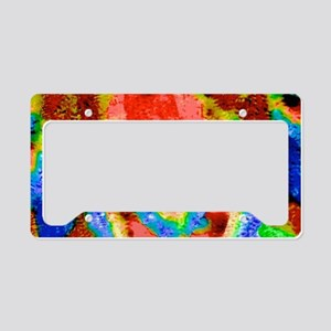 A Touch Of Color License Plate Holder