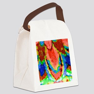 A Touch Of Color Canvas Lunch Bag