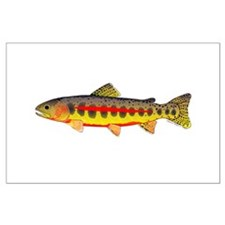 Golden Trout Posters