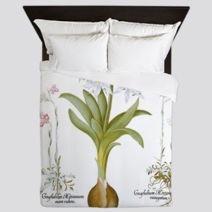 Vintage Flowers by Basilius Besler Queen Duvet