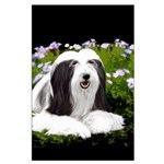 Bearded Collie (Painting) Large Poster