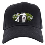 Bearded Collie (Painting) Black Cap with Patch