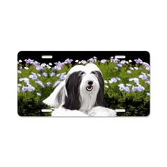 Bearded Collie (Painting) Aluminum License Plate