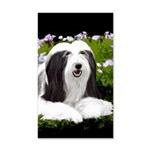 Bearded Collie (Painting) 20x12 Wall Decal