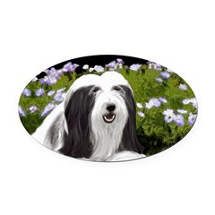 Bearded Collie (Painting) Oval Car Magnet