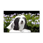 Bearded Collie (Painting) Car Magnet 20 x 12