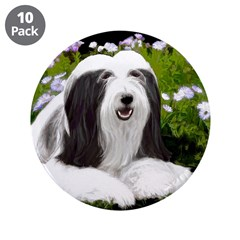 Bearded Collie (Painting) 3.5