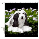 Bearded Collie (Painting) Shower Curtain