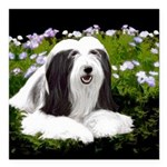 Bearded Collie (Painting Square Car Magnet 3