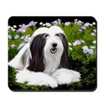 Bearded Collie (Painting) Mousepad