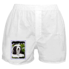 Bearded Collie (Painting) Boxer Shorts