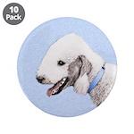 Bedlington Terrier 3.5