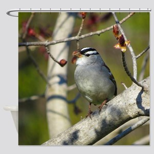 white crowded sparrow Shower Curtain