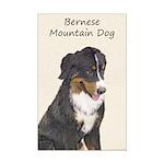 Bernese Mountain Dog Mini Poster Print