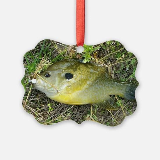 Greeny. Fish Retro Tuna RCM Wild  Ornament