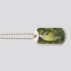Greeny. Fish Retro Tuna RCM Wild Wow  Dog Tags