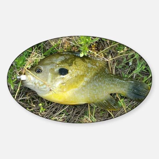 Greeny. Fish Retro Tuna RCM Wild Wo Sticker (Oval)