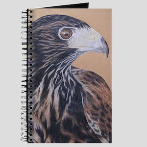 Immature Harris Hawk Journal