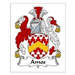 Amos Family Crest Small Poster