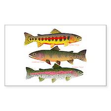 3 Western Trout Sticker