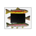 3 Western Trout Picture Frame