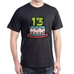 13 Year Old Birthday Cake Dark T-Shirt
