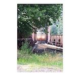 Train On a Bridge, N.S. RR Postcards (Package of 8
