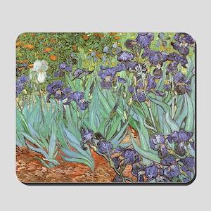 Van Gogh Irises, Vintage Post Impression Mousepad
