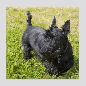 Scottie Dog Tile Coaster